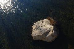 Una grande roccia in acqua Fotografie Stock