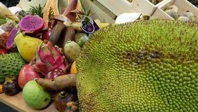 Una grande selezione dei frutti esotici quali le giache archivi video