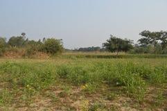 Una granja Foto de archivo