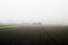 Una granja en la niebla gruesa con las plantas simétricas en el foregroun Imagen de archivo libre de regalías