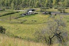 Una granja en las montañas de Altai fotografía de archivo