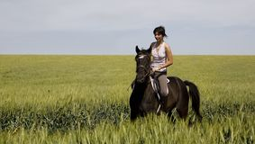 Una guida femminile su un cavallo nero Fotografia Stock