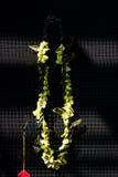 Una guirnalda de orquídeas Fotografía de archivo