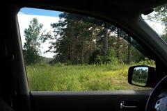 Una hermosa vista de la naturaleza del verano de la ventana del coche Vista interior del coche Fotografía de archivo libre de regalías