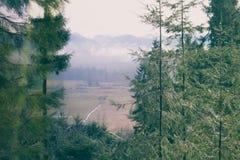 Una imagen beauftiful de Washington State fotografía de archivo libre de regalías