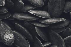 Una imagen blanco y negro de la textura del fondo de las semillas de calabaza imagenes de archivo