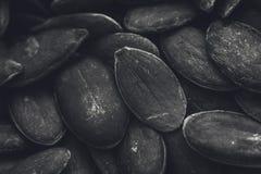 Una imagen blanco y negro de la textura del fondo de las semillas de calabaza imagen de archivo