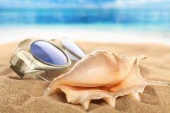 Una imagen de la playa con las gafas de sol y el caracol Fotos de archivo libres de regalías