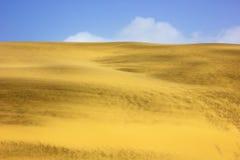 Una imagen de un desierto Imágenes de archivo libres de regalías