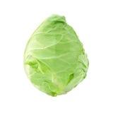 Una imagen de una cabeza de la col fresca Imagen de archivo