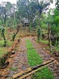 Una imagen de una zona agrícola montañosa en el eliya del nuwara, Sri Lanka fotografía de archivo libre de regalías