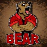 Una imagen del oso en un fondo de madera Imagen de archivo libre de regalías