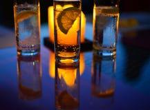 Una imagen hermosa de un vidrio con agua chispeante mineral y una rebanada de limón dentro Fotografía de archivo