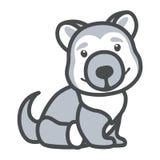 Una imagen que representa un perro esquimal de la raza del perro Fotos de archivo libres de regalías