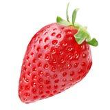 Una intera frutta della fragola isolata su fondo bianco Fotografie Stock