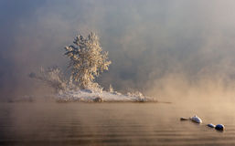 Una isla en la niebla Fotos de archivo