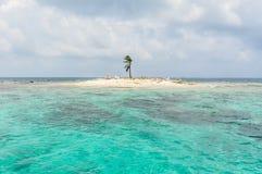 Una isla hermosa del árbol de Palme, en San Blas, Panamá. America Central. Imagenes de archivo