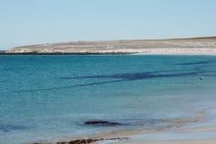 Una isla más triste - Falkland Islands Fotografía de archivo libre de regalías