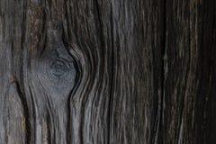 Una línea de madera mojada modelo con el ojo de madera que parece mágico y sagrado imagen de archivo libre de regalías
