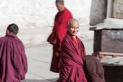 Una lama in tempio di Zhashilunbu, Tibet, Cina fotografia stock