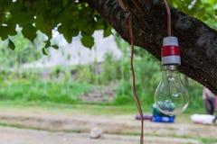 Una lampadina del vecchio tungsteno di modo con goccia di acqua al fondo immagine stock libera da diritti