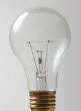 Una lampadina della famiglia fotografia stock