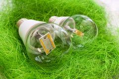 Una lampadina E27 di due LED con differenti schegge in grande vetro trasparente Immagini Stock