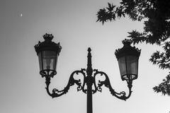 Una lanterna urbana della via del metallo di due lampade appena contro un chiaro cielo nella sera con gli alberi e una luna, Immagine Stock Libera da Diritti