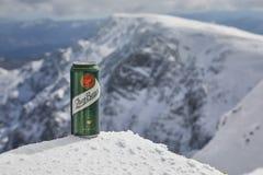 Una latta della birra di Zlaty Bazant su una montagna fotografia stock