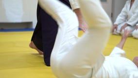 Una lección en Aikido almacen de video