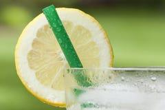 Una limonata ghiacciata Fotografia Stock Libera da Diritti