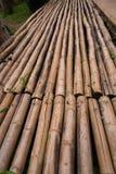 Una linea di parete di bambù gialla che dissolvenza ed età entro tempo ฺฺ fotografie stock