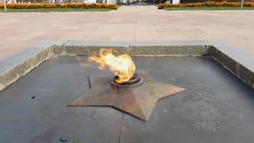 Una llama eterna quema en la cámara lenta almacen de video