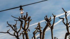 Una luce aumenta Fotografia Stock Libera da Diritti