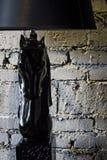 Una luce del cavallo scuro Immagine Stock
