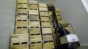 Una máquina especial, cargador, la carretilla elevadora pone las cajas de madera grandes con las manzanas encima de uno a, en un  metrajes