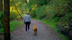 Una más vieja mujer que camina en una trayectoria de bosque con su perro almacen de metraje de vídeo