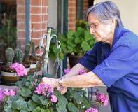 Una más vieja mujer que trabaja en su jardín Foto de archivo libre de regalías