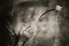 Una más vieja mujer ruega y adora a Buda con Lotus Fotos de archivo