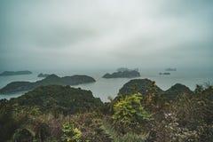 Una mañana cubierta oscura y brumosa en la bahía de Halong, foto entonada Paisaje hermoso de la montaña con el punto de vista en  foto de archivo libre de regalías