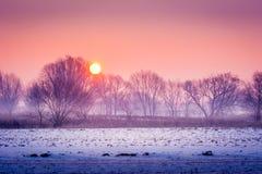 Una mañana fría del invierno fotografía de archivo