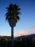 Una mañana fresca Foto de archivo