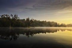 Una mañana hermosa Imágenes de archivo libres de regalías