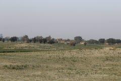 Una mañana hermosa del invierno en desierto del thall Imagenes de archivo