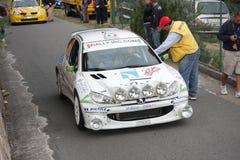 Una macchina da corsa di Peugeot 206 Immagini Stock Libere da Diritti