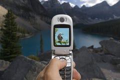 Una macchina fotografica mobile fotografie stock