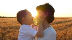 Una madre feliz besa a un niño que lo detiene en sus brazos en un campo de trigo en un fondo de la puesta del sol metrajes