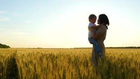 Una madre feliz celebra a su bebé en un abrazo en un campo de trigo durante puesta del sol, la madre abraza y besa al niño almacen de metraje de vídeo