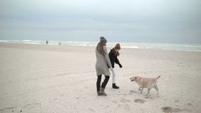 Una madre joven con una hija del adolescente y un perro son felices de caminar a lo largo de la playa metrajes