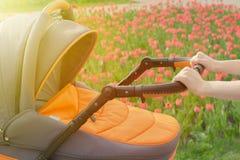 Una madre joven está caminando con un cochecito de bebé en un parque del verano en un día soleado Foto de archivo